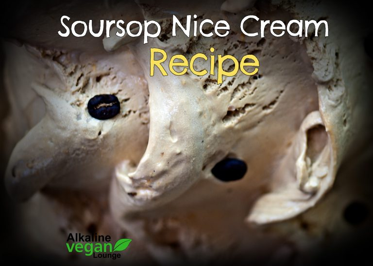vegan nice cream with soursop