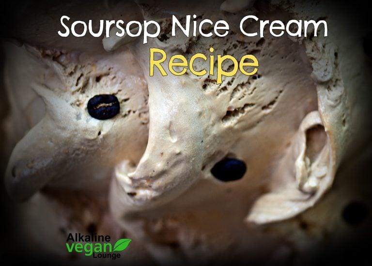 vegan nice cream with soursop