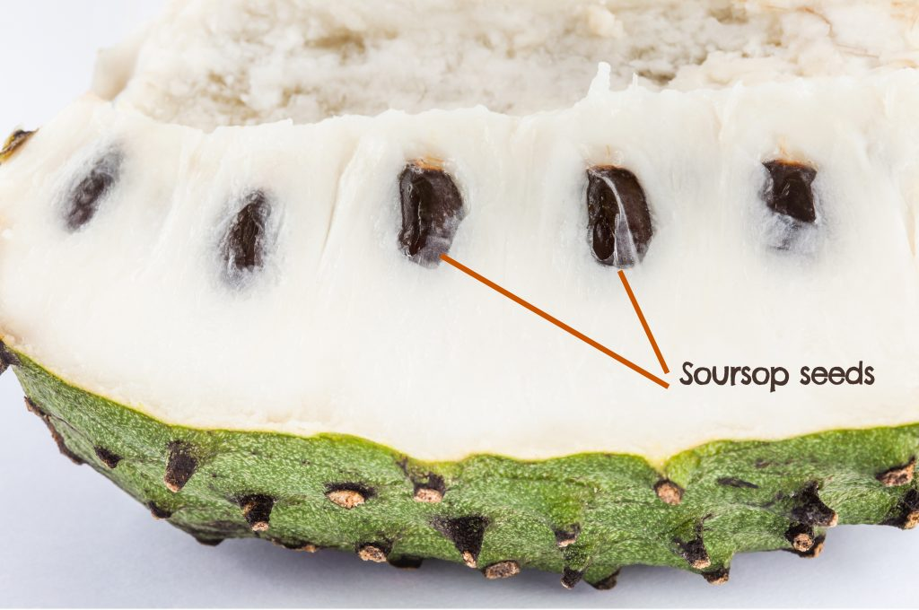 How to remove soursop seeds