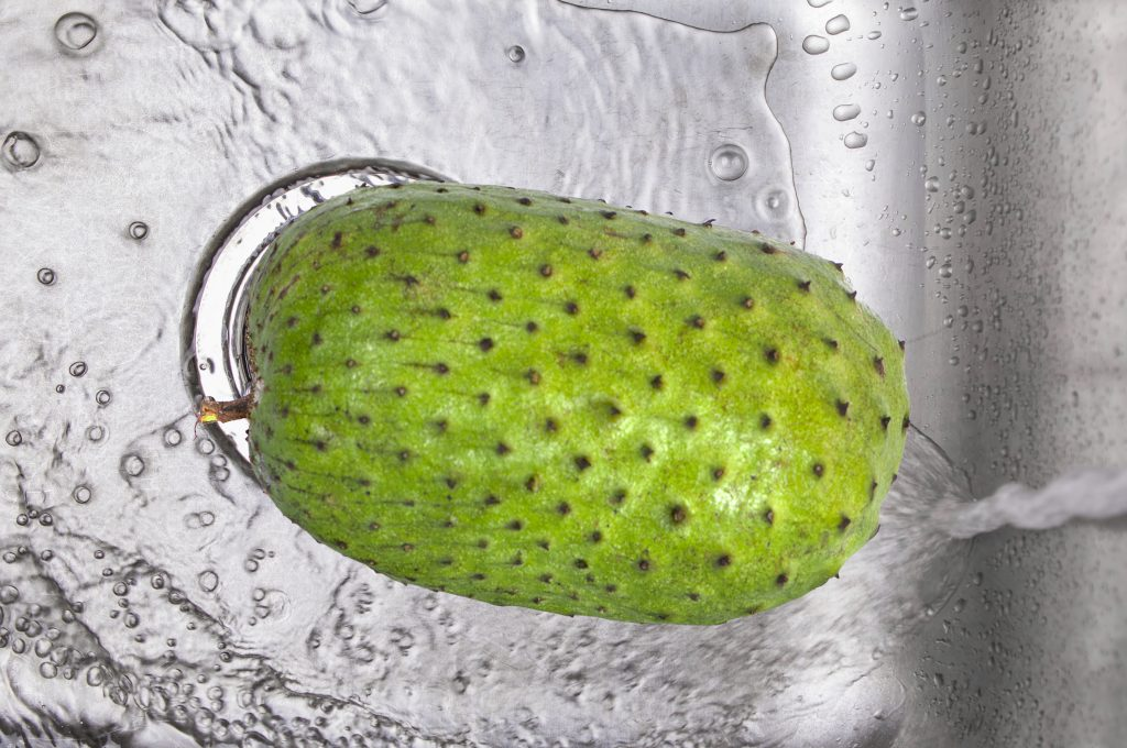 How to eat a soursop fruit