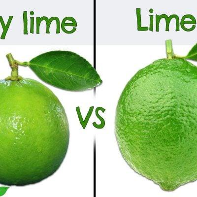 Key lime vs Lime benefits