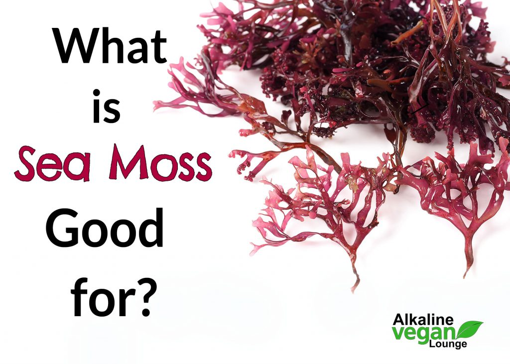 Health Benefits of sea moss gel
